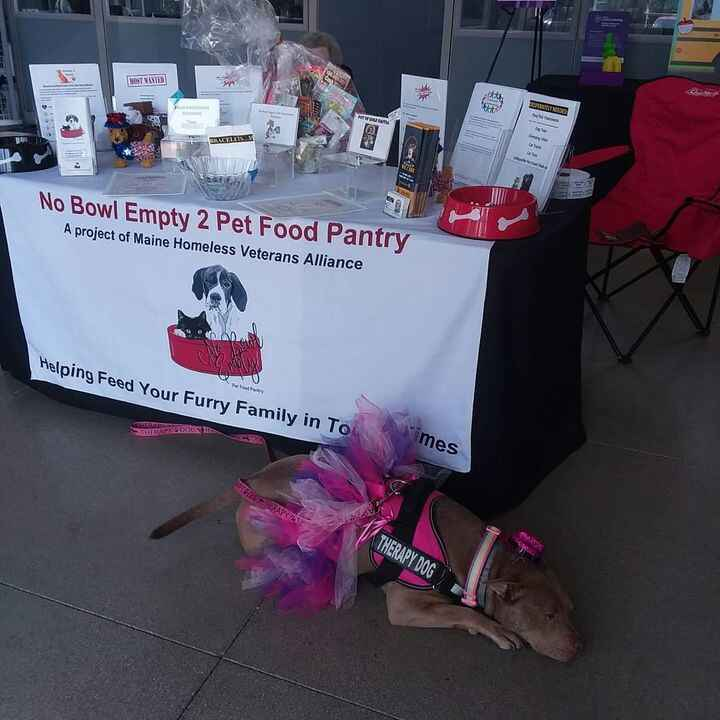 Photos from No Bowl Empty Pet Food Pantry 2's post