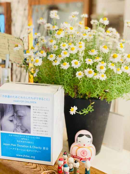Photos from 元町 FOREST〜hair&healing〜's post